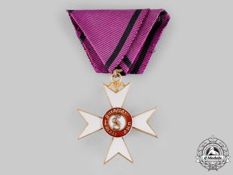 Order of the Württemberg Crown, Civil Division, Knight's Cross (in gold, 1818-1864)