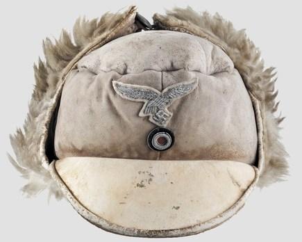 Luftwaffe Officer Ranks Winter Visored Field Cap Obverse
