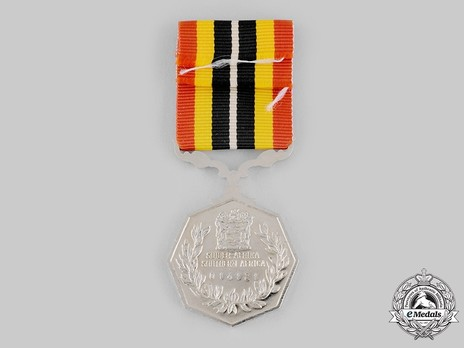 Southern Africa Medal (uniface suspender)