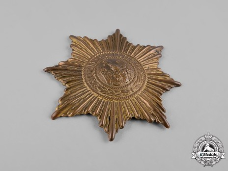 Guard Helmet Star (in bronze gilt) Obverse