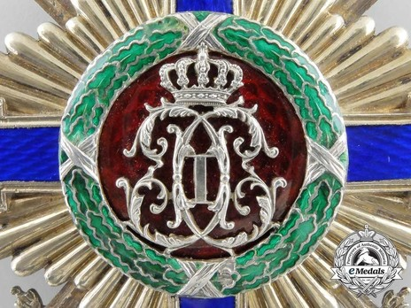 The Order of the Star of Romania, Type I, Military Division, Grand Cross Reverse Detail
