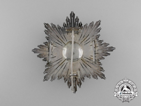 2nd Class Breast Star (white distincion pension) (with Fleur de Lys and Royal Crown) (PROFESORADO) Reverse