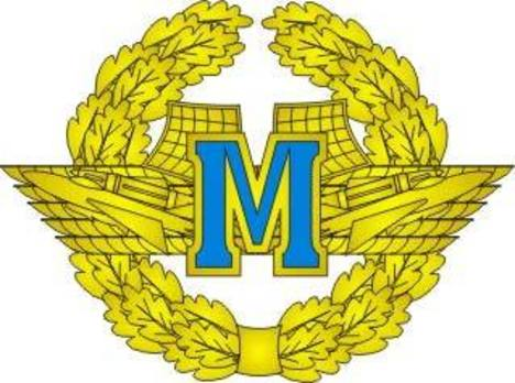 Voluntary Military Service Airforce Master Badge Obverse