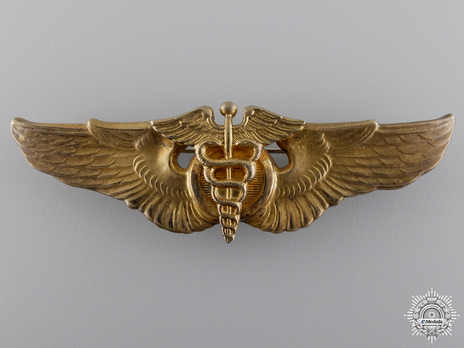 Basic Wings (with gold) Obverse