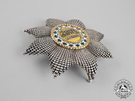 Breast Star (with diamonds)