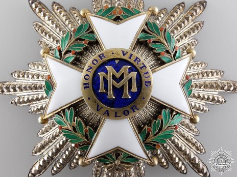 Order of Military Merit, II Class Breast Star (for Other Service) Obverse Detail