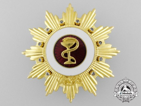 Order of Medical Merit, I Class Breast Star Obverse