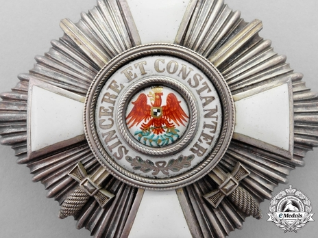Type V, Military Division, II Class Breast Star (with swords, in silver gilt)