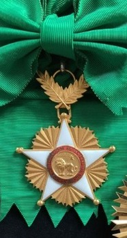 Order of the Lion, Grand Cross
