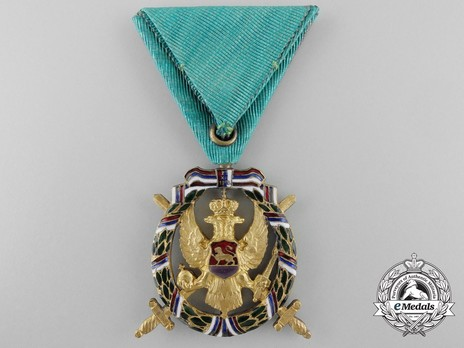 Green Force Medal Reverse
