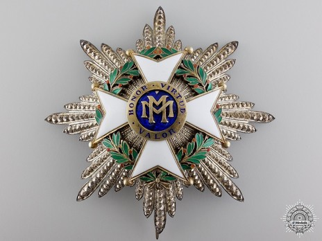 Order of Military Merit, II Class Breast Star (for Other Service) Obverse