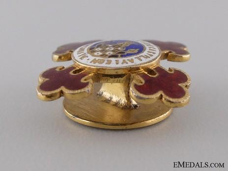Miniature Grand Cross Breast Star Reverse