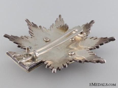 Order of Dannebrog, Grand Cross Breast Star (Silver/Gold) Reverse