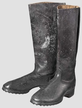 Luftwaffe Marching Boots Obverse