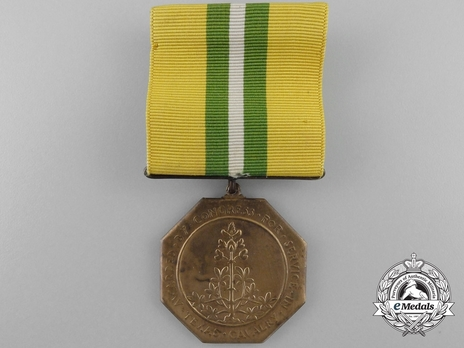 Texas Cavalry Congressional Medal Obverse