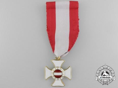 Hungarian Military Order of Maria Theresa, Knight