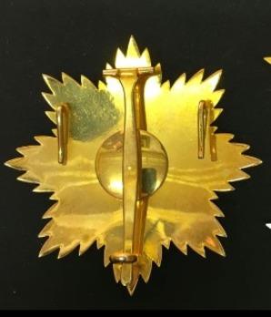 National Order of Merit, Grand Cross Breast Star Reverse