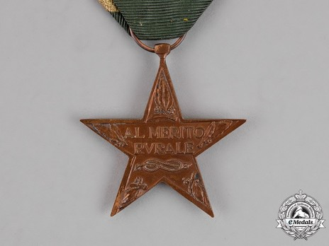 Star of Rural Merit, in Bronze Reverse