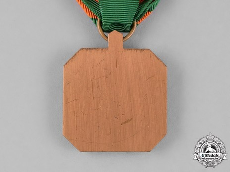 Navy and Marine Corps Achievement Medal Reverse