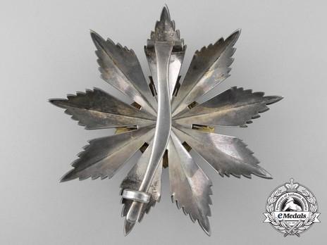 Order of Gediminas, Type II, I Class Breast Star Reverse