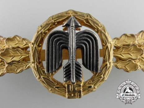 Short-Range Day Fighter Clasp, in Gold Detail