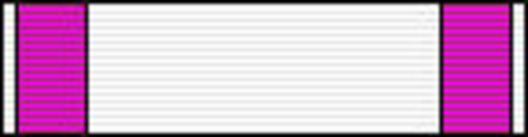 Officer (for Literature, 2000-) Ribbon