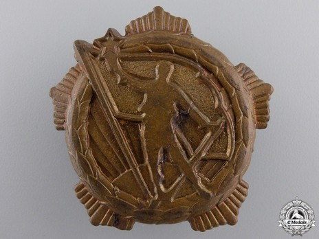 Medal for Remembrance, Type II, Large Badge (in Bronze) Obverse