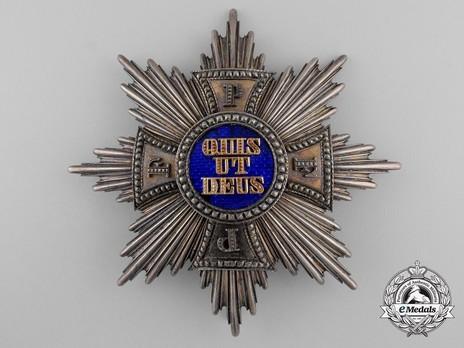 Royal Order of Merit of St. Michael, Grand Cross Breast Star Obverse