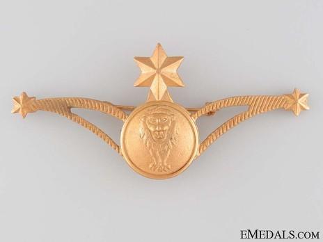 Air Force Navigator's Wings Badge Obverse