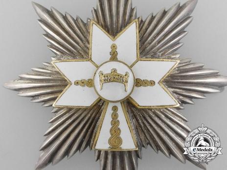 I Class Grand Officer Breast Star Reverse