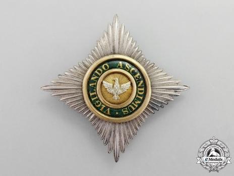 Type II, Civil Division, Commander Breast Star (in silver gilt)