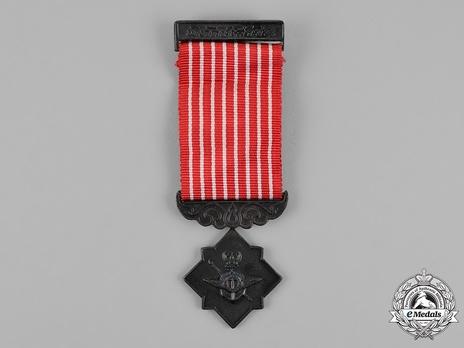 Safeguarding Bronze Medal (II Class) Obverse