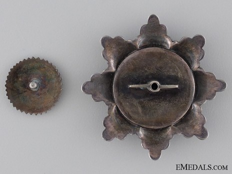 Breast Star (Prinzen size circa. 1900) Reverse