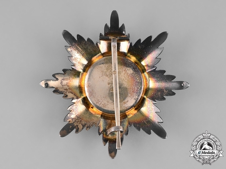 Order of Saint Alexander Nevsky, Type III, Civil Division, Breast Star (in silver) Reverse