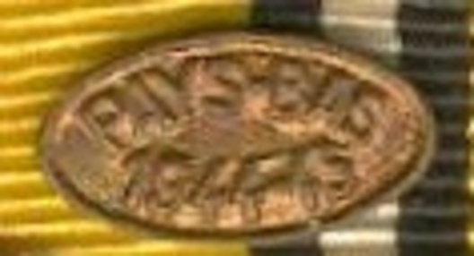 Bronze Medal Clasp for Campaign Service Obverse