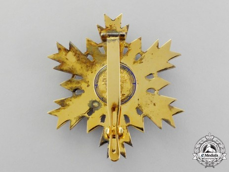 Order of National Security Merit, Type I, I Class Breast Star Reverse