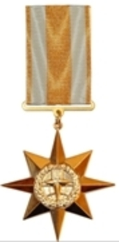 Allegiance and Honour Medal, I Class Obverse