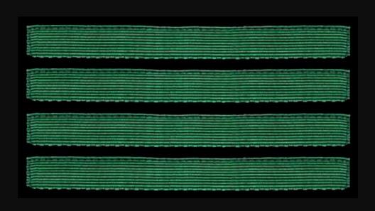German Army Oberfeldwebel Sleeve Grade Insignia Obverse