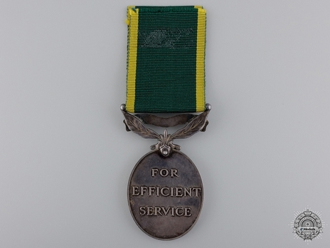 Silver Medal (for Territorial Forces, with King George V effigy) Reverse