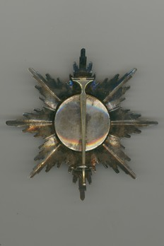 I Class Breast Star (with swords, in gold) Reverse
