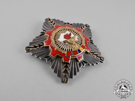Order of the Victory of Socialism, Breast Star (in silver gilt) Obverse