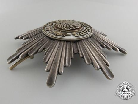 Order of St. Alexander, Type I, II Class Grand Cross Breast Star Obverse