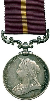 Silver Medal (for Natal, with Queen Victoria effigy) Obverse