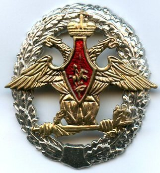 Assistance to the Environmental Protection Office of the Defense Ministry of the Russian Federation Oval Decoration Obverse