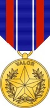 Secretary of Defense Medal for Valor