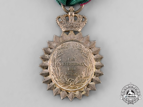 Order of Merit for Arts and Sciences, Type I Reverse