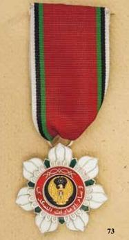 Emirates Military Order, V Class