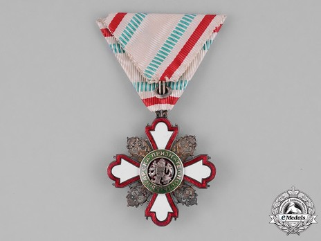 Order for Incentive to Humanity (Red Cross), II Class (for Men) Reverse