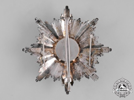 Order of the Eagle Cross, I Class Breast Star Reverse