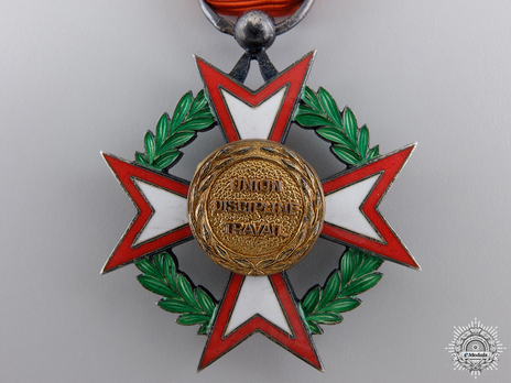 National Order of Côte d'Ivoire, Knight  Reverse